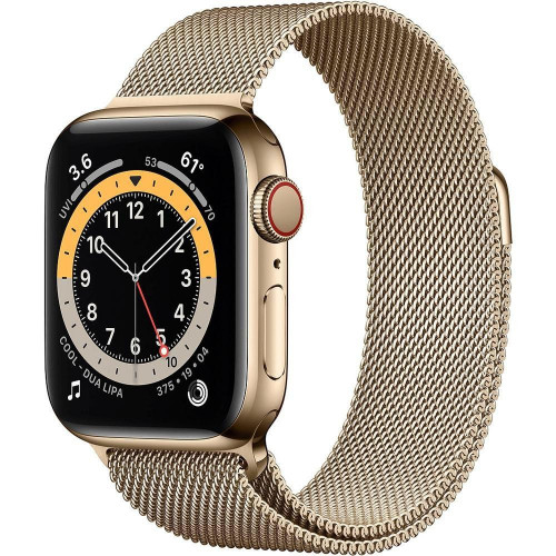 Apple Watch 6 40mm 4G Gold Stainless Steel Case with Gold (M06W3)